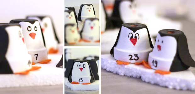 tierischer adventskalender f r pinguin fans. Black Bedroom Furniture Sets. Home Design Ideas